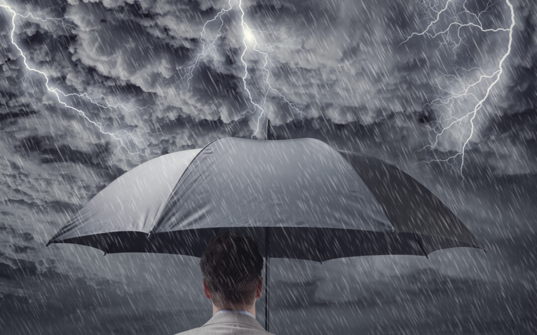 IDEAS FOR STORM-PROOFING YOUR FINANCES & YOUR HOME FROM GROUND TO ROOF